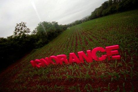 ignorance2